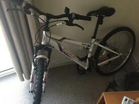 One-year mountain bike for sell