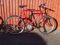 "Raleigh Firefly - 22"" Cro-Moly Frame/15 spd Bike/V-Brakes/Serviced/30 Day Warranty"