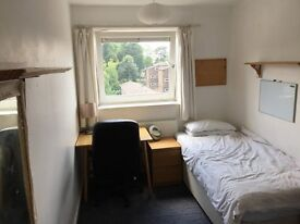 Available NOW! Spacious stunning double room close to Hammersmith and Richmond (SW15 5LG)