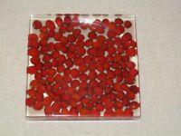 Red Berries Handcast Resinware Coasters (4x)