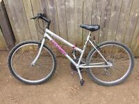 Concept quicksilver mountain bike ladies womens