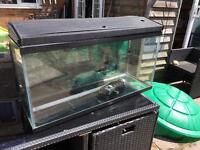 Fish tank 3ft by 1ft by 1.5ft