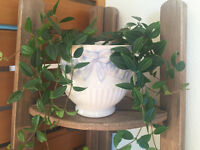2 Pretty Green Hanging Plants in White Pots with Bow & Floral Details