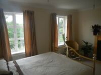 large double room available for rent near Ashford International Station and town centre