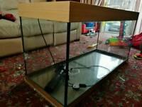 400l fish tank