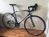 Specialized Allez Sport Road Bike 56cm frame, Brilliant road bike, Great condition