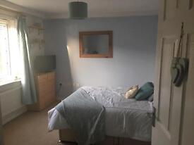 Large Double Room to Let (Monday to Friday)