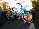 """GIRLS 20"""" WHEEL BIKE WITH FITTED BASKET IN GREAT WORKING ORDER AGE 7-11"""