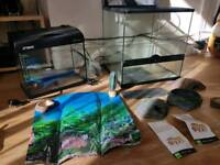 vivarium and fish tank