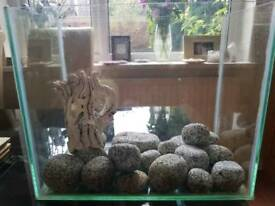 Small glass fish tank, ornaments for sale separately