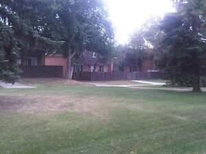Londonderry Square - 4 Bedroom Townhome for Rent Edmonton Edmonton Area image 2