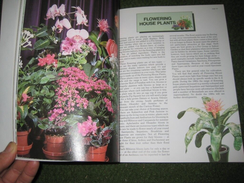 The New House Plant Expert by Dr D.G.Hessayon
