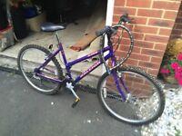 Raleigh Ladies/Older Girls Mountain Bike I Purple Metallic I Excellent Condition