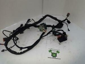 USED - Harley Davidson 2000 XL Sportster 883 Hugger - Wiring Harness - near perfect condition - OEM 70135-99 - ID 1245
