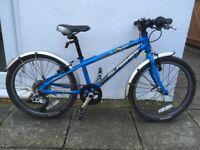 Islabikes Beinn 20 (small) children bike for sale
