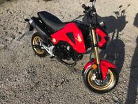 2015 Honda MSX 125 cc only 2500 miles - 2 keys with alarm fobs - Service History - mini monkey bike