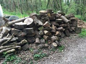 Large quantitie of seasoned Logs ideal for wood burner or open fire