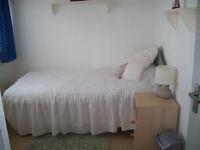 single room shared house