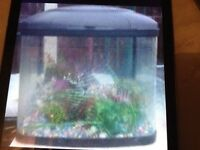 Fish tank accesseries inc £15