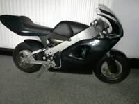 Polini carena 910 rare 2 stroke mini moto collectable (not blata, grc, pit bike, classic)