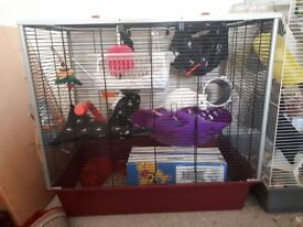 Rat cage - suitable for up to 4 rats - available start of June - collection only