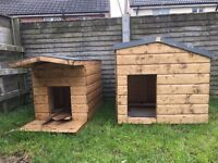 Large and Extra Large Dog Kennel £90 Each