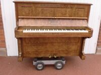 C BECHSTEIN BIRLIN BURR WALL NUT RECENT RE BUILD £1280 CAN DELIVER