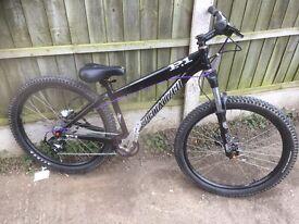 Specailized P1 jump bike