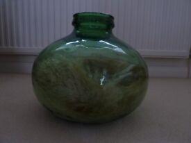 Green glass bottle garden or use as goldfish bowl
