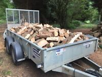 Large trailer load of hardwood logs fully seasoned, mainly ash, for open fires and wood burners.