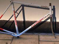 Vintage Francesco Moser 15.151 bike frame Super Prestige
