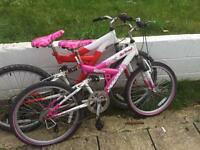Girls bike spears or repairs