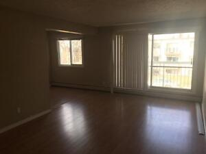2 Units Available, 2 Bedroom 1 Bath Apart, $995, Available Now!!
