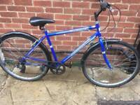 """Men's 19"""" Professional hybrid bike bicycle. Free delivery"""