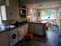 Lovely Ground-floor Double Bedroom to Rent in Friendly House-share