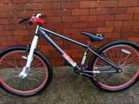 X Rated Dirt Jump Bike