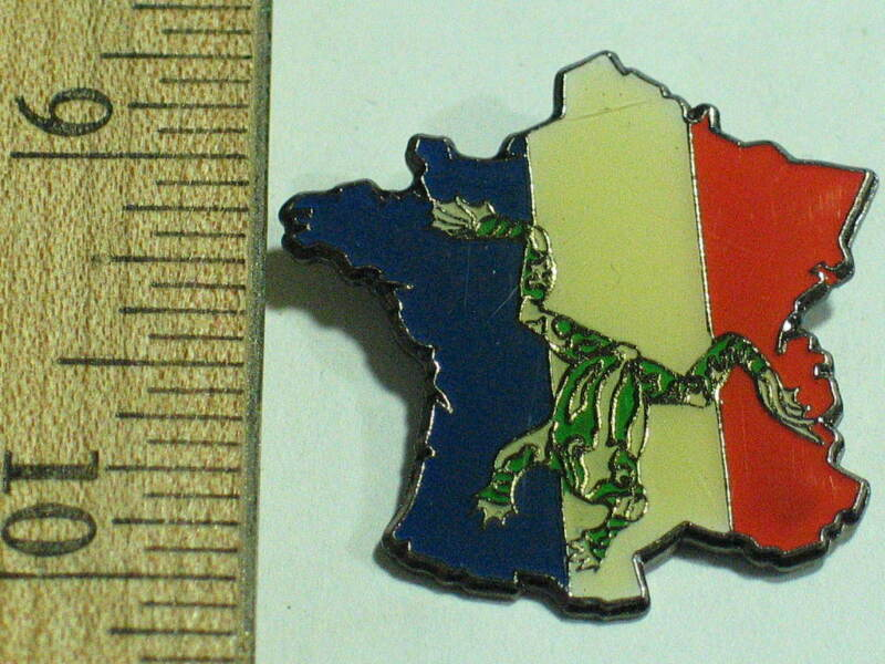 French Toad or Frog Pin Shape of  France   ( Ex lg)