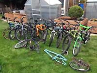 Job lot BMXs can deliver locally