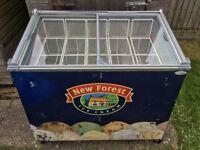Tefcold New Forest Ice Cream Cream Freezer