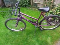 Bicycle for Sale! Raleigh Max