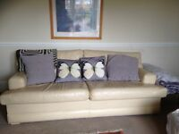 Large leather comfortable sofas