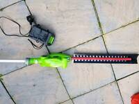 Greenworks 24v cordless long reach extending pole trimmer