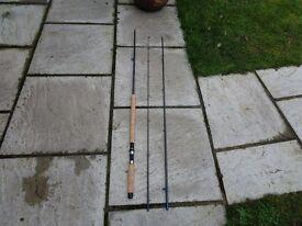 Berkley Phazer salmon fly rod