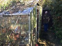 Free Greenhouse and contents