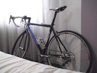 Ridley Damocles Carbon Road Racing Bike. Campagnolo Group Set. Excellent Condition.