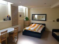 Big double room ensuite-bright house share in Shoreditch