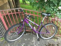 LADIES RALEIGH MOUNTAIN BIKE