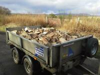 HARDWOOD LOGS/LIMBS £65.00 per m2 bag Load of limbs £160.