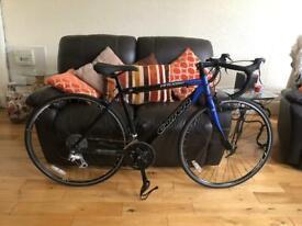 LIKE NEW Carrera Virtuoso Road Bike