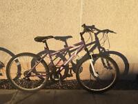 Girls Bike - Apollo Twilight